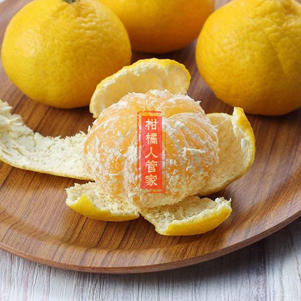 媛小春柑橘图片